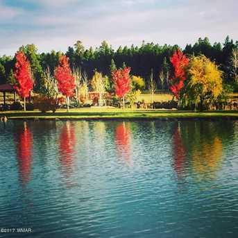 9570 Sierra Springs Drive - Photo 3