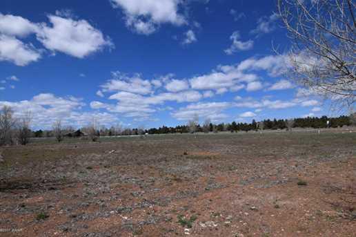 2325 Quarter Horse Trail - Photo 19
