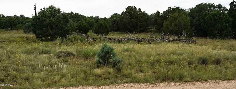 Lot 57 Apache County Road 3170 Lot 57 - Photo 11