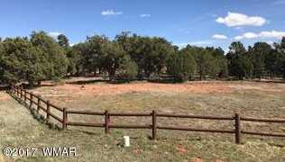 957 Cheney Ranch Loop - Photo 5