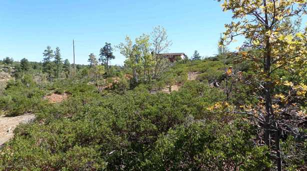 839 Wilderness Trail - Photo 5