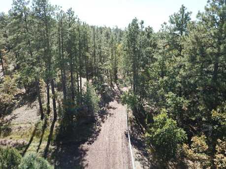 931 Woodland Lake Road - Photo 2