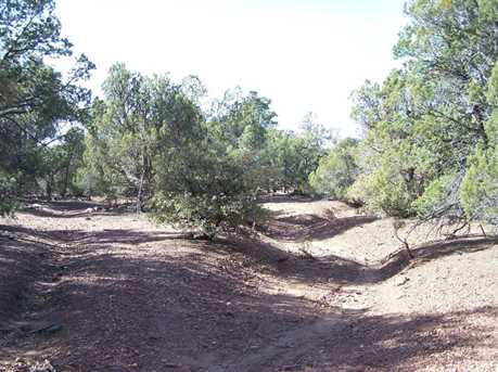 Tbd Timber Ranch - Photo 7