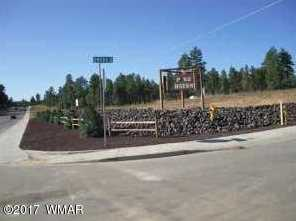 Lot 46 S Mountain Pines Avenue - Photo 1