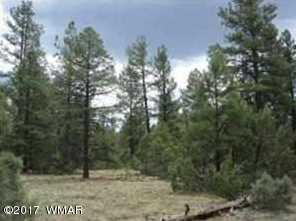 Lot 47 Mountains Pines - Photo 9