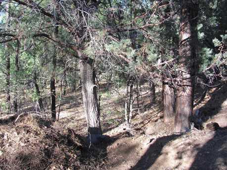 488 Walnut Creek Loop - Photo 3