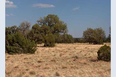 Lot 396 Chevelon Canyon Ranch - Photo 1