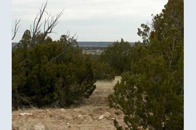 Lot 302 Chevelon Canyon Ranch - Photo 1