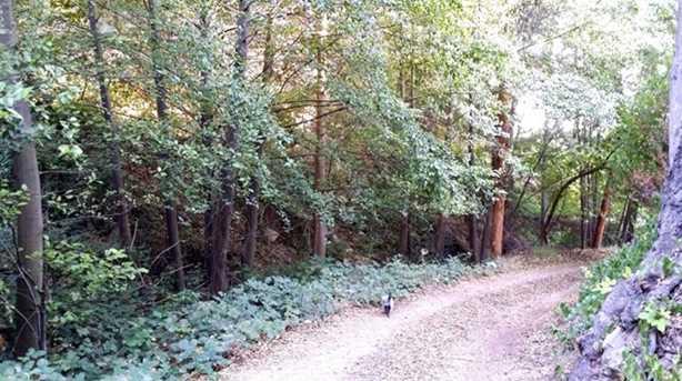 0 Palmer Canyon Road - Photo 9
