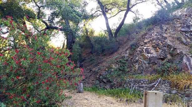 0 Palmer Canyon Road - Photo 15