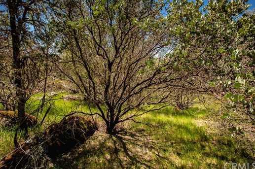 4541 Little Buck Rd - Photo 3