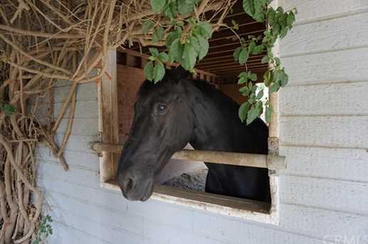 20112 Cypress St - Photo 11