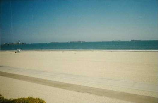 1310 E Ocean Boulevard #304 - Photo 15