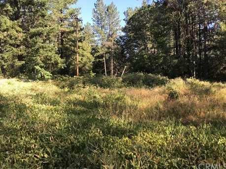 0 Pavlik Pines Rd - Photo 1