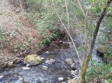 4115 Dry Creek Rd - Photo 17
