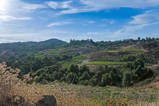 38280 Via Majorca - Photo 69