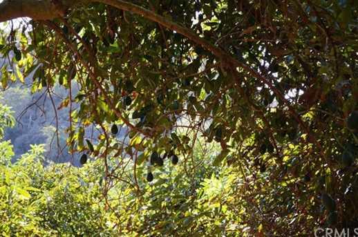 12575 Calle De Halcones - Photo 29