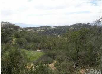 1034 Rolling Hills - Photo 3