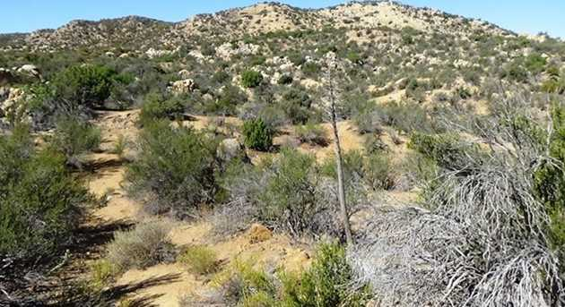 29 Covered Wagon Trail - Photo 6