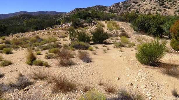 29 Covered Wagon Trail - Photo 3