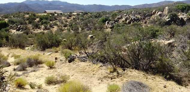 29 Covered Wagon Trail - Photo 36