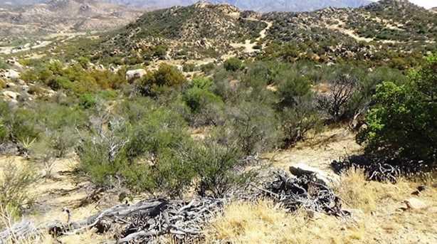29 Covered Wagon Trail - Photo 25