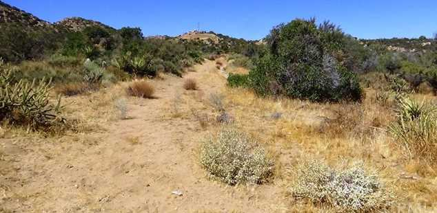 22 Broken Wheel Trail - Photo 23