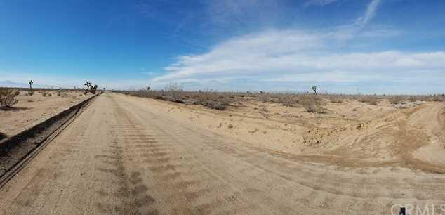 11000 Cactus Rd - Photo 3