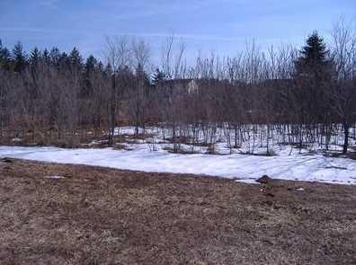 4568 Lake Pines Lane - Photo 1