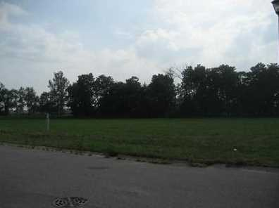 5294 Mandiberry Lane - Photo 5