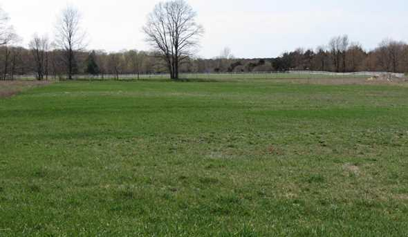 Meadow View - Photo 17