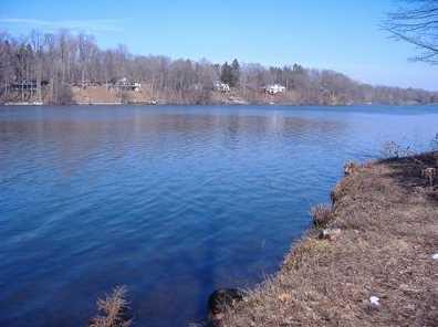4517 Lake Chapin Rd - Photo 5