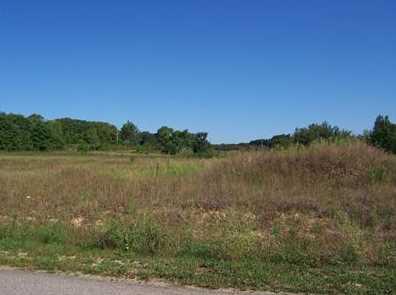 5672 Meadow Lane #18 - Photo 3