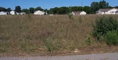 5581 Meadow Lane #33 - Photo 3