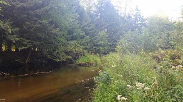 12580 Bear Creek Lane - Photo 2