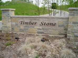 Lt92 Timber Stone Subdivision - Photo 1