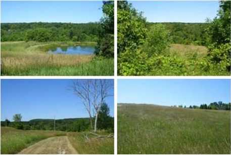 32 Acre  State Road 57 - Photo 1