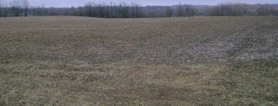 47 86 Acre County Road W - Photo 1