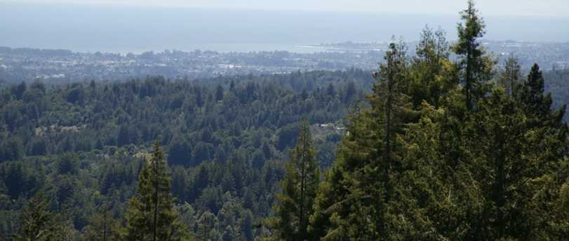 0000 Aptos View - Photo 19
