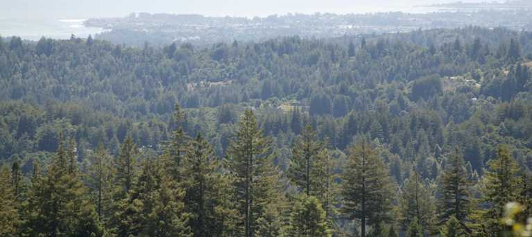 0000 Aptos View - Photo 7