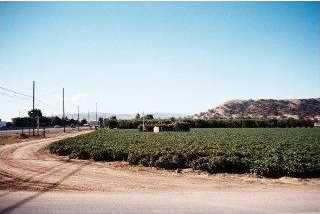 5015 Monterey Rd - Photo 3