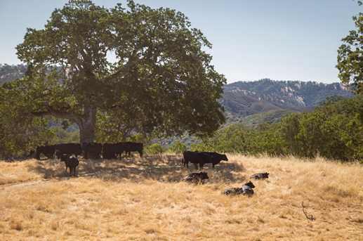 35351 Carmel Valley Rd - Photo 19
