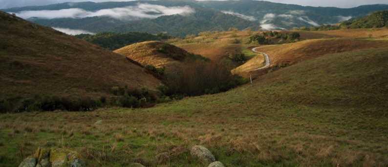 1 Penon Peak Trail - Photo 3