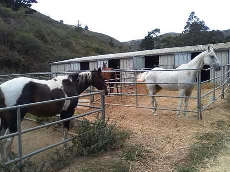 1 Picardo Ranch - Photo 5