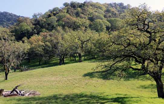 22 Arroyo Sequoia - Photo 1