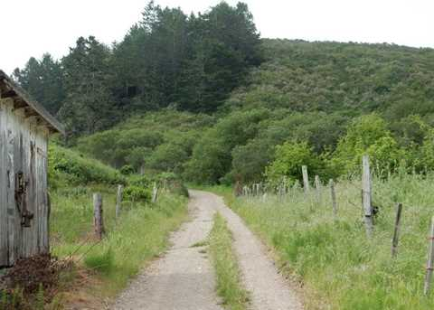 6090 Stage Rd - Photo 13