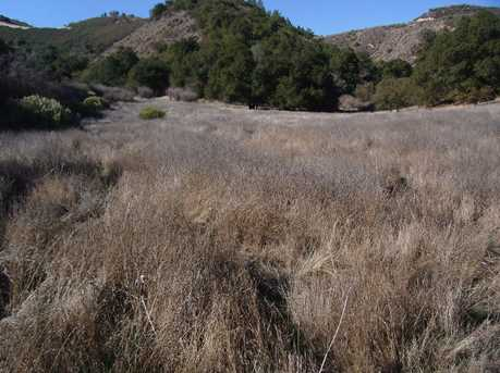 00 Pine Canyon - Photo 5