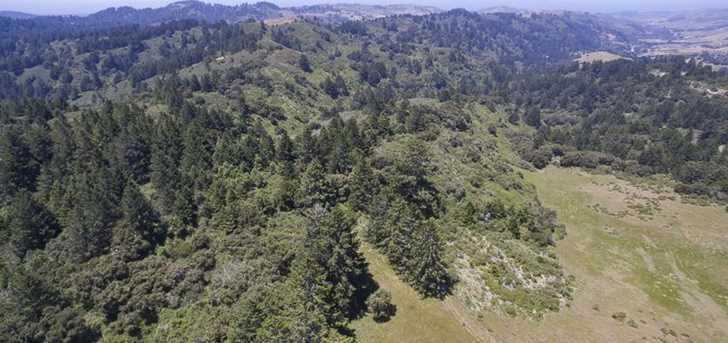 0000 Pescadero Creek Rd - Photo 5