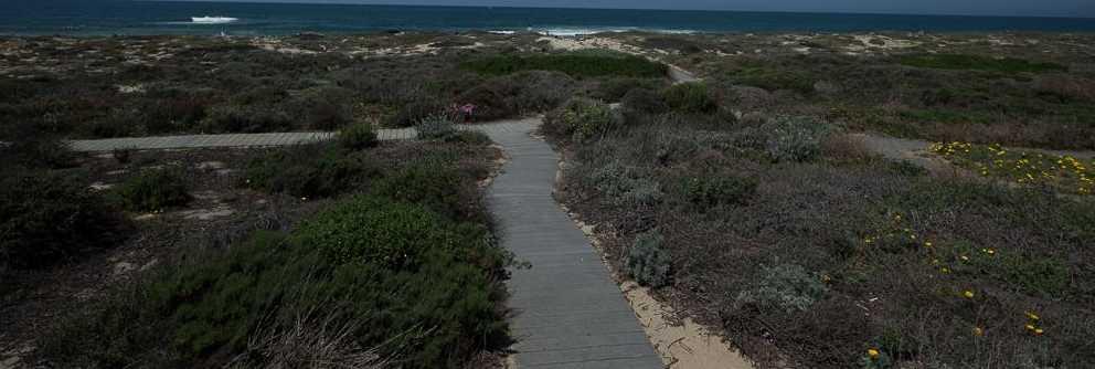 300 Monterey Dunes Way - Photo 7