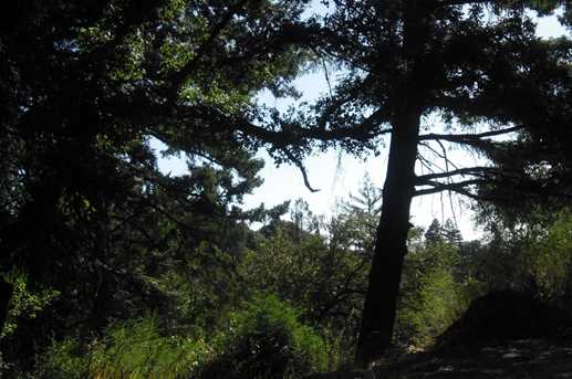 000 Bear Creek - Photo 7
